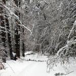 Winterweg ist weg