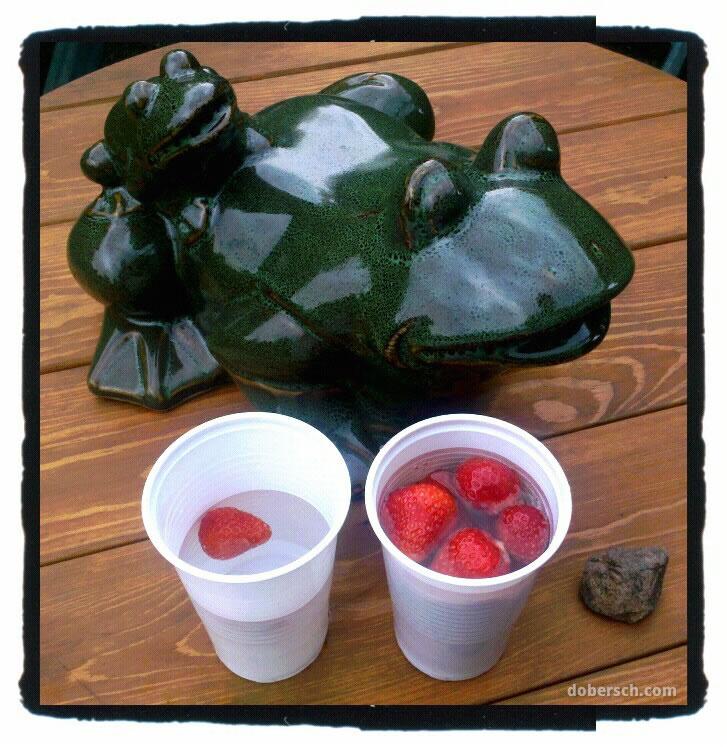 Frosch mit Erdbeeren