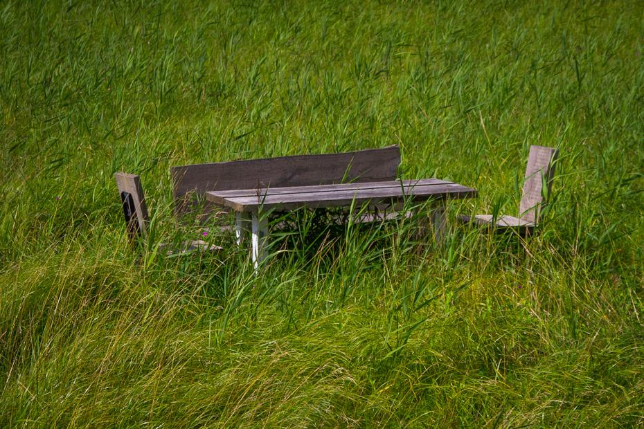 Bank und Tisch auf einer Uferwiese
