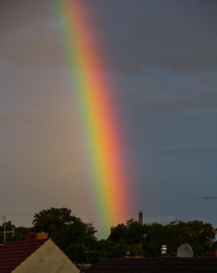 Kräftiger Regenbogen am Morgen