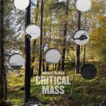 Michael Danner - Kritische Masse (buch)